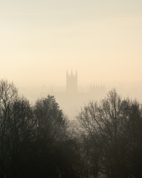 Canterbury Cathedral looking past trees on UKC in the mist