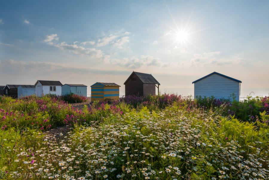 beach huts on kingsdown beach, kent